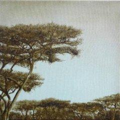 Afrika-Baum.jpg